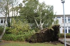 Sturmschaden Wohnblock