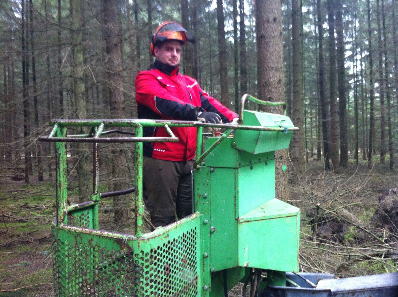 Wertholzastung.6